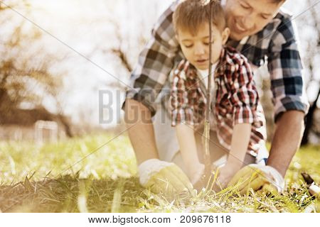 Collective work. Smiling father feeling happiness while standing behind his son and working together in the garden