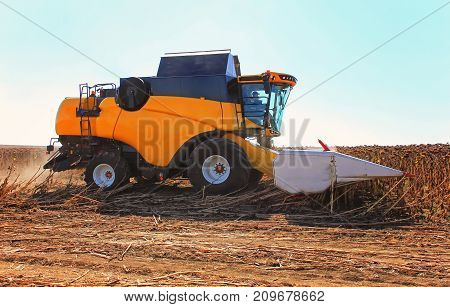Combine Harvester Working In Action On The Field. Agriculture. Cultivated Area.