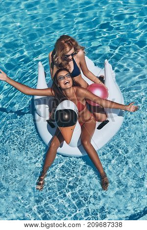 Always happy together. Top view of two beautiful young women in bikini smiling while floating on a big inflatable swan