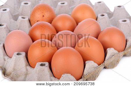 eggs in the package  fresh, group, nature, cooking,