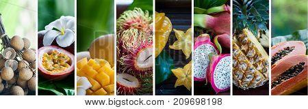 Exotic, tropical fruits. Healthy food concept. Organic food. Collage of tropical color fruits . Passion fruit, longan, rambutan, lychee, dragon fruit, papaya, pineapple, mango, carambola