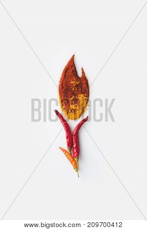 Spices In Shape Of Fire