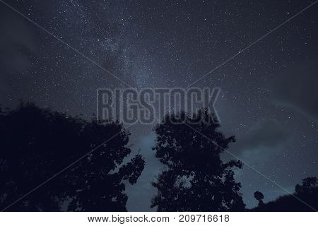 Long exposure and High ISO shot of star and milky way over the mountain and silhouette of tree at night.