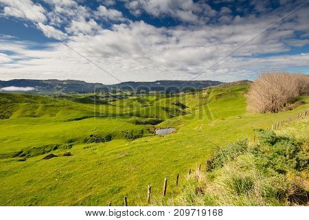 Classic New Zealand scenery near SH5 in between Taupo and Napier on a warm spring day.