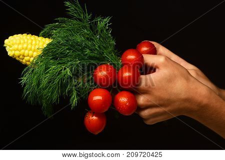 Farming And Fall Crops Concept. Female Hands Hold Vegetables