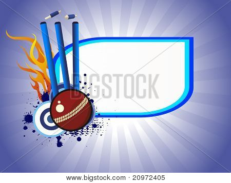 abstract grungy cricket concept background, vector illustration