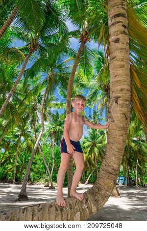 The Boy On The Palm