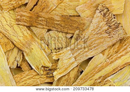 Closeup texture of dried Mongolian milkvetch, known as huang qí used in traditional Chinese medicine (Astragalus propinquus)