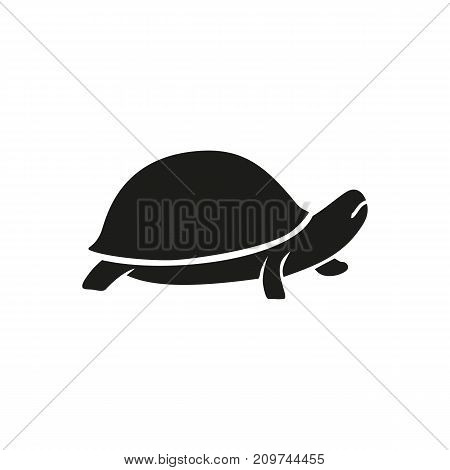 Simple icon of turtle. Reptile, domestic animal, marine life. Pet types concept. Can be used for topics like aquarium, fauna, zoology