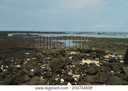 Bay in Hawaii Big Island HAwaii USA.