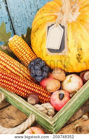 Tray With Pumpkin And Different Ripe Fruits And Vegetables