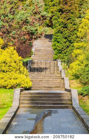 Stone stairs and trees in Sochi Arboretum in sunny day Russia