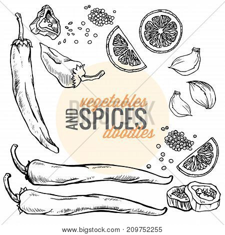 Various fresh raw vegan organic vegetables, food and spices. Black ink doodles food illustration on white background seen from top view with lemon slice , garlic , pepper , seeds for marketing banner