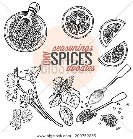 Various raw vegan organic seasonings and spices black ink doodle illustration isolated . top view with lemon slice , basil leave , pepper , parsley , a full ceramic bowl and an empty metal spoon