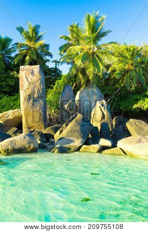 Exotic Peace Beauty