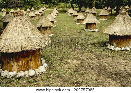 Glade in outdoor, group wooden bee hives with thatched roof of honey bees on a meadow, located in several rows