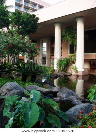 Tropical Gardens And Koi Pond