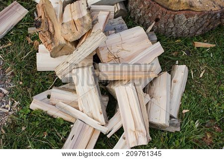 country photo with chopped logs on green grass, forest background
