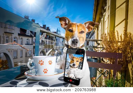 Dog Having A Coffee Break And Selfie