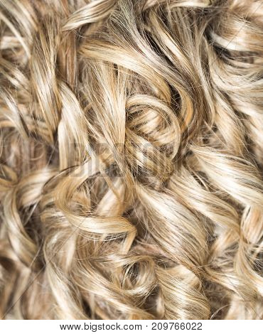 Curly Hair. Hairdressing. Wave .Natural Hair . Photo of an abstract texture