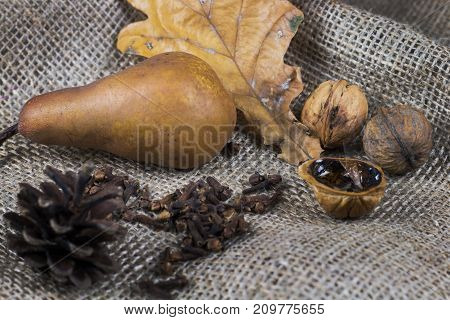 Autumn still life with leaf nuts pear and cone on brown fabric.