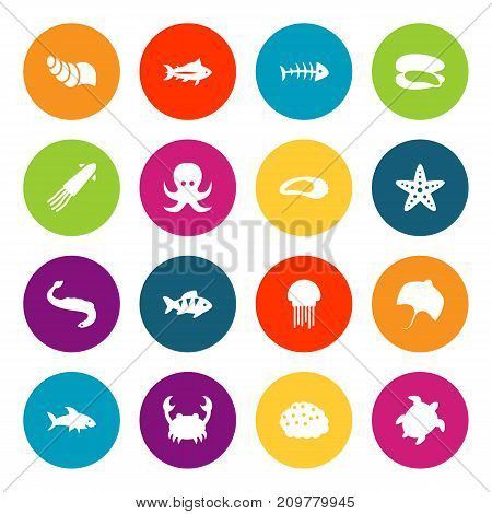 Collection Of Sink, Clam, Tunny And Other Elements.  Set Of 16 Sea Icons Set.