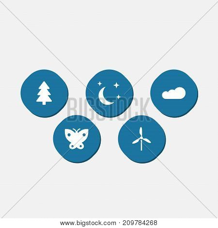 Collection Of Spruce, Wind Energy, Midnight And Other Elements.  Set Of 5 Bio Icons Set.