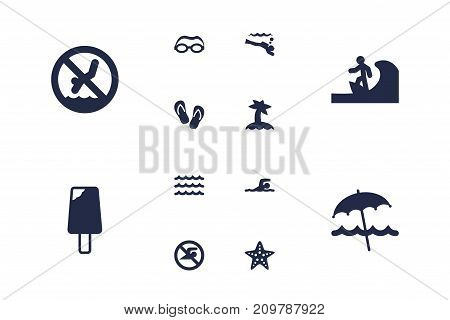 Collection Of Palm, Flip Flop, No Swimming Sign And Other Elements.  Set Of 12 Coast Icons Set.