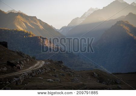 Evening in mountains. panorama of the picturesque gorge, nature of the North Caucasus