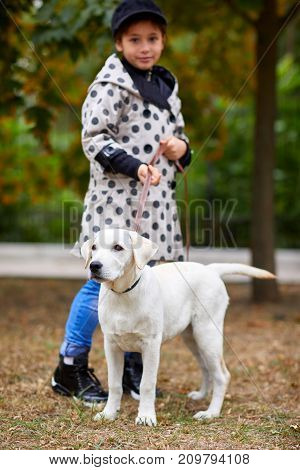 Cute girl kid with doggie walking in the park. Having fun together outdoors on the nature background. Full length of girl. Animal concept.
