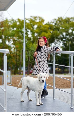 Cute little girl with doggie walking on the street. Posing at camera on the nature background. Full length of pet with owner. Animal concept.