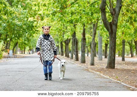 Funny doggie walking with owner in the park. Pet with girl outdoors on a natural background. Full length of girl. Animal concept.