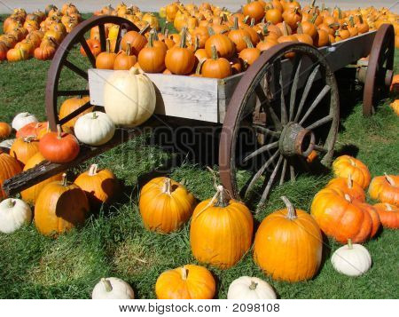 Pumpkin On A Wagon