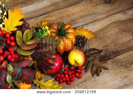 Thanksgiving Decor With Berries, Pumpkin, Rowan And Oak Leaves, Copy Space