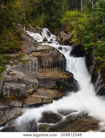 A fast moving mountain stream in Mount Rainier National Park.