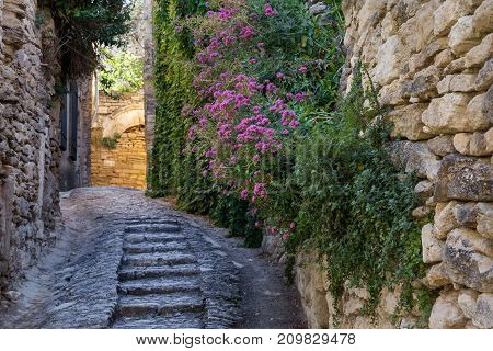 Flowers grow from the wall in a quiet street of a small town in Provence.