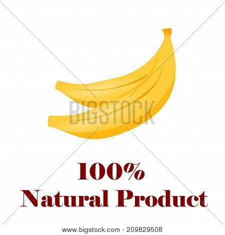 100 percent natural product banana on white background
