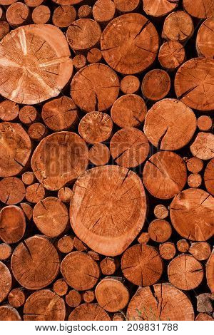 Natural wooden logs cut and stacked in pile felled by the logging timber industry Abstract photo of a pile of natural wooden logs background