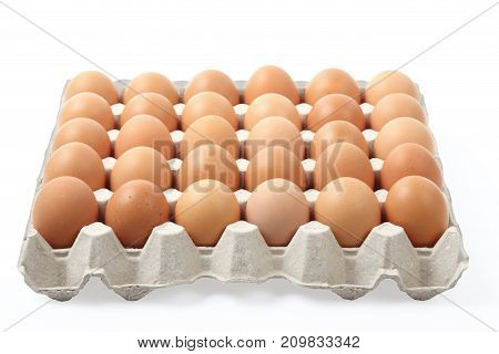 farm fresh chicken eggs in tray isolated over white background, clipping path.