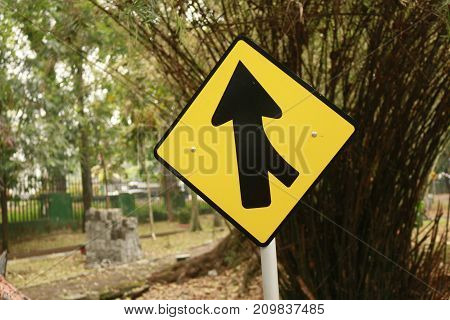Yellow Merging Road Sign against bamboo tree