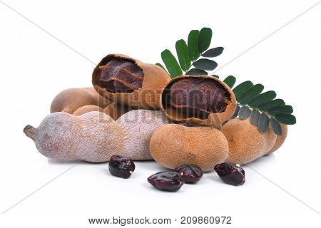 tamarind with leaf and seeds tropical fruit isolated on white background
