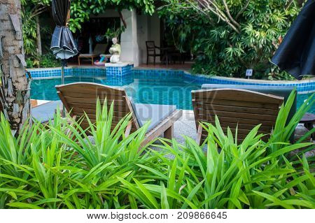 Tropical garden with a pool and sun loungers in a vignette of flowers. Relaxation in the hotel by the pool