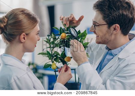 Biologists With Magnifying Glass And Plant