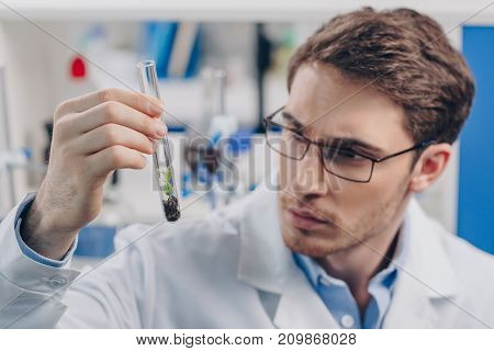 Biologist Working With Plant In Flask