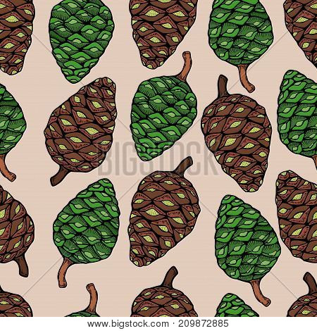 New year holiday vector, Christmas tree green branches,pine cone in seamless pattern background.
