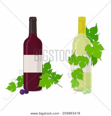 White and red wine bottles with grapes leaves on a white background.Vector illustration