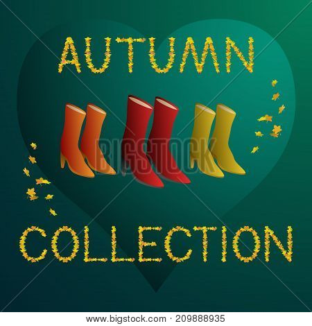 Autumn collection - women boots concept vector illustration