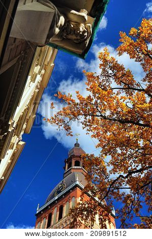 Dome Cathedral in Riga on the background of an old oak tree with yellow leaves and buildings with a bas-relief of the Atlantean