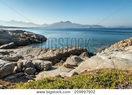 Rocky Coastline Of Corsica With Citadel Of Calvi In The Distance