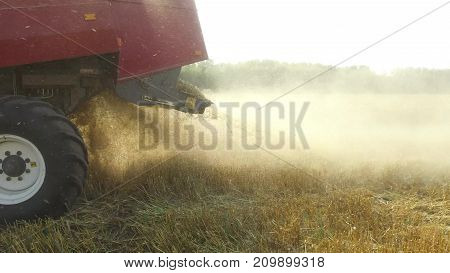 Wheat harvesting shearers. Wheat harvesting. Harvesting wheat bread agriculture steadicam shot motion video